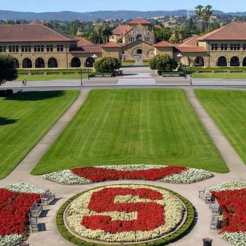 TOP 5 Trường Đại Học Đào Tạo Ngành Tâm Lý Học Tốt Nhất Tại Mỹ