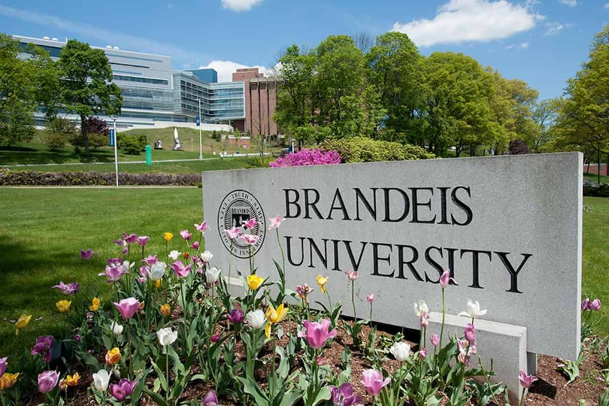 Trường Đại Học Brandeis – Brandeis University